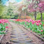 Piękny oraz uporządkowany ogród to zasługa wielu godzin spędzonych  w jego zaciszu w trakcie pielegnacji.